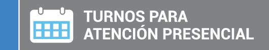 Turnos_boton_chico_2
