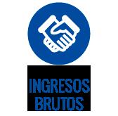 ingresos_brutos
